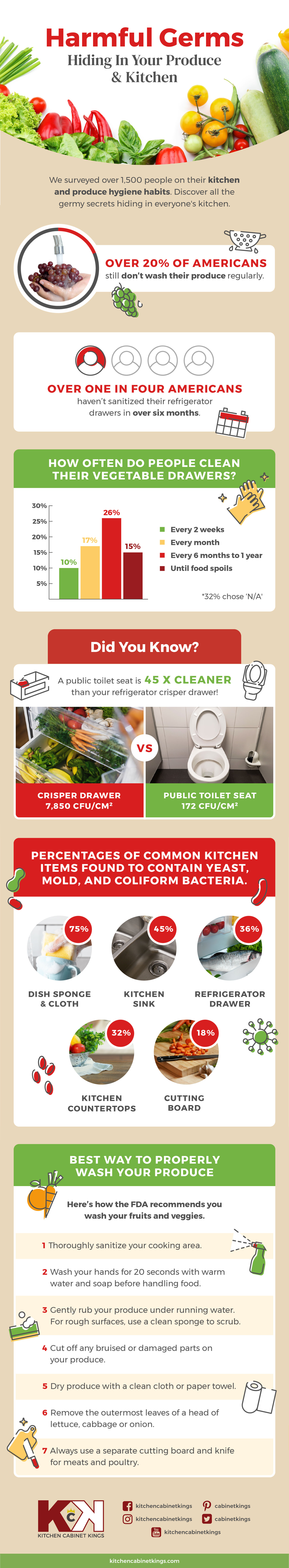 Kitchen and Produce Hygiene Habits [Infographic] | ecogreenlove